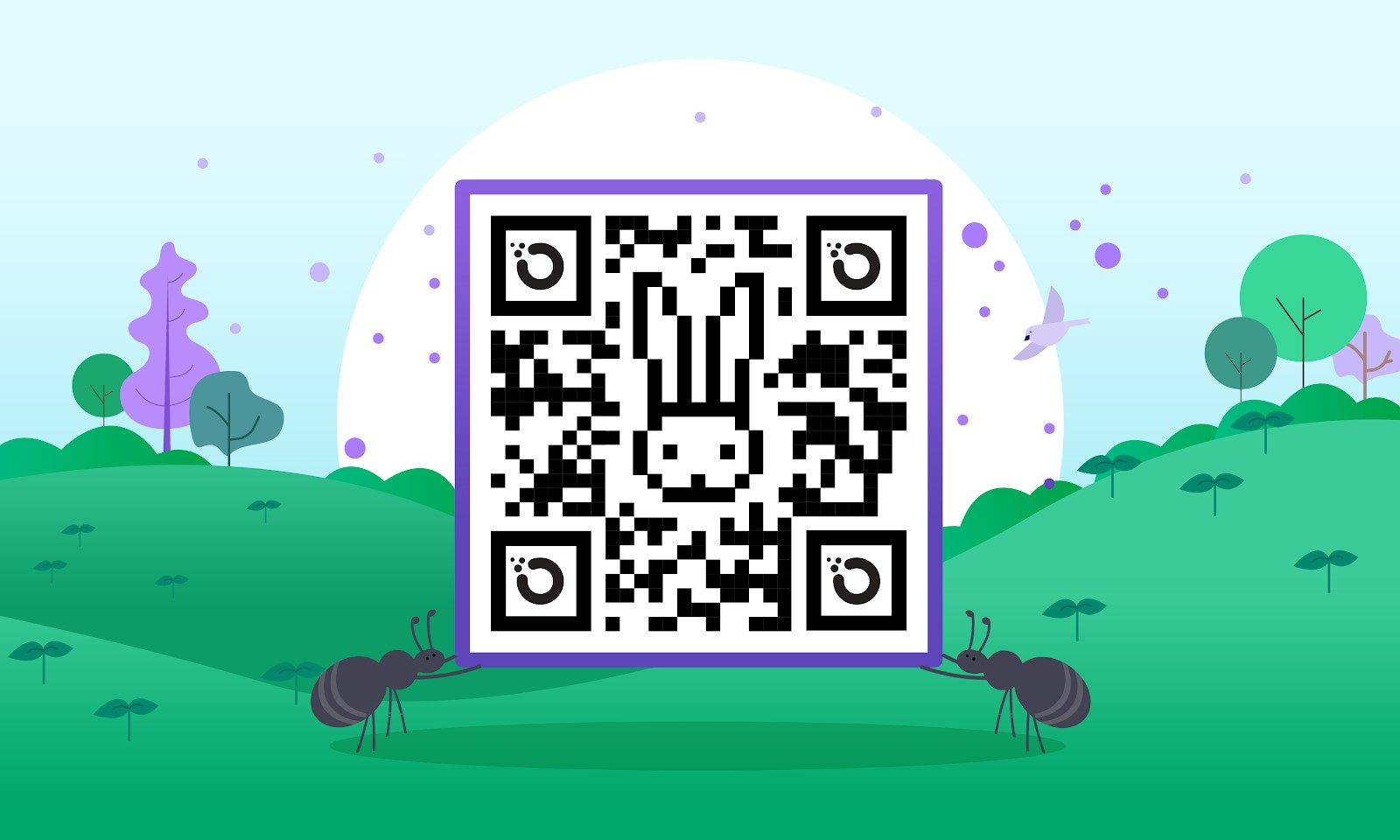 Get hopping faster: Making privacy easier with QR codes